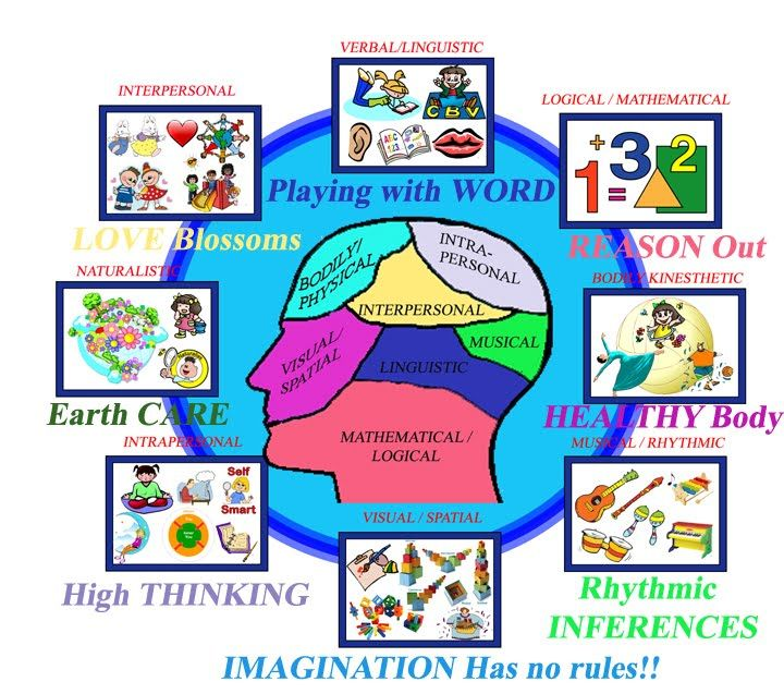 howard gardners theory of human intelligence education essay This page provides general background information about the theory of multiple intelligences,  howard gardner, professor of education  howard intelligence.