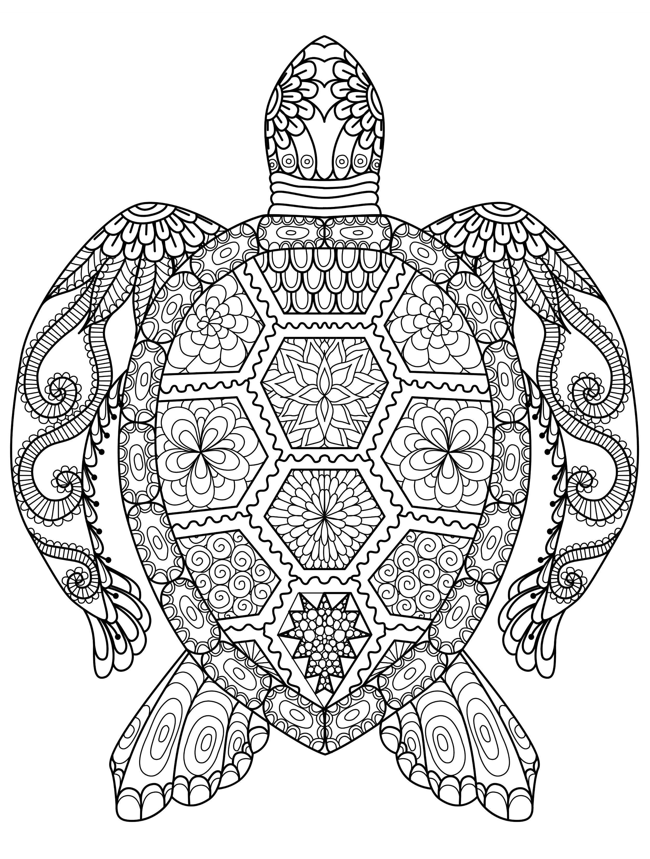 sea turtle coloring page for adults for free download #ColoringPages ...