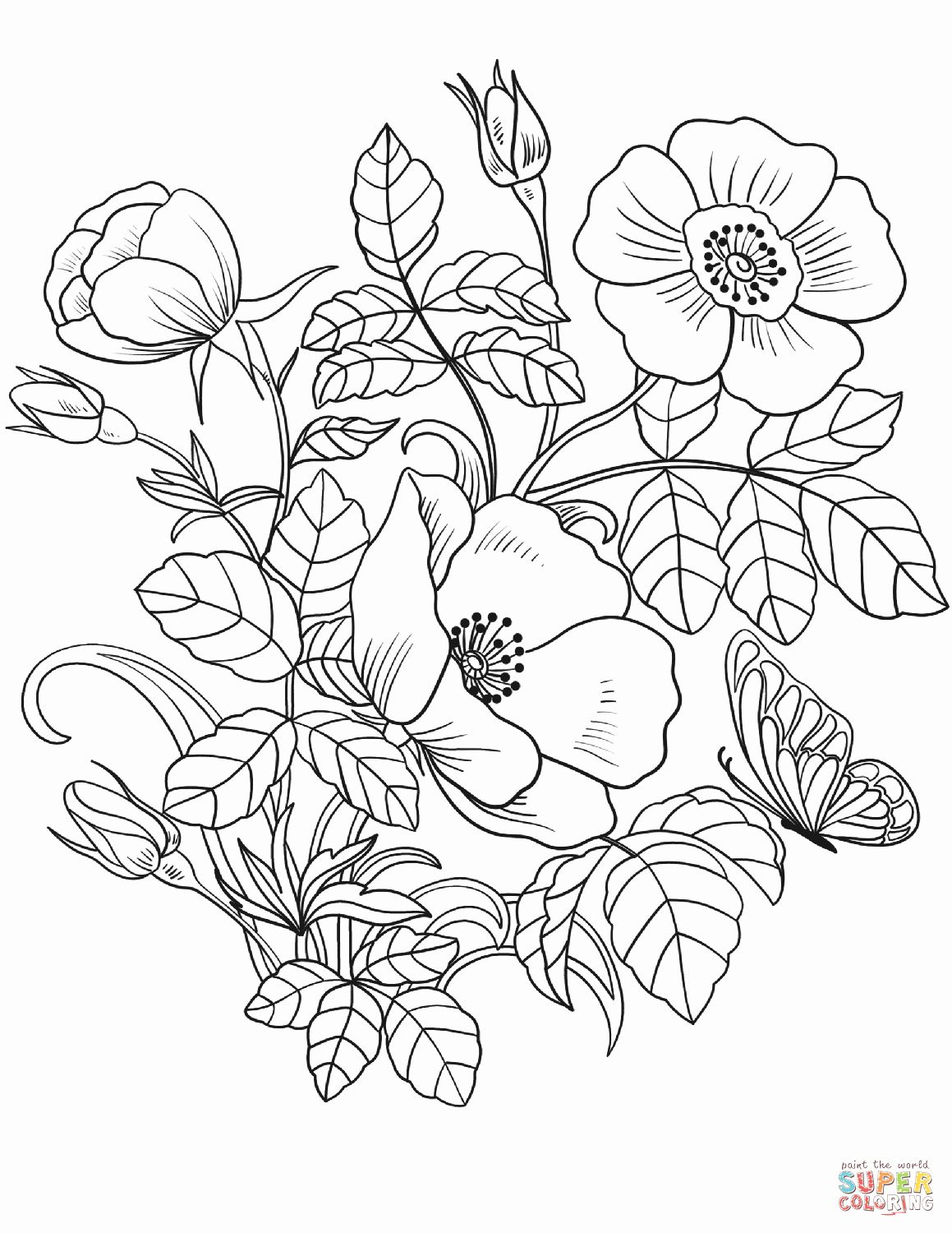 Pictures Of Flowers Coloring Pages Beautiful Spring Flowers
