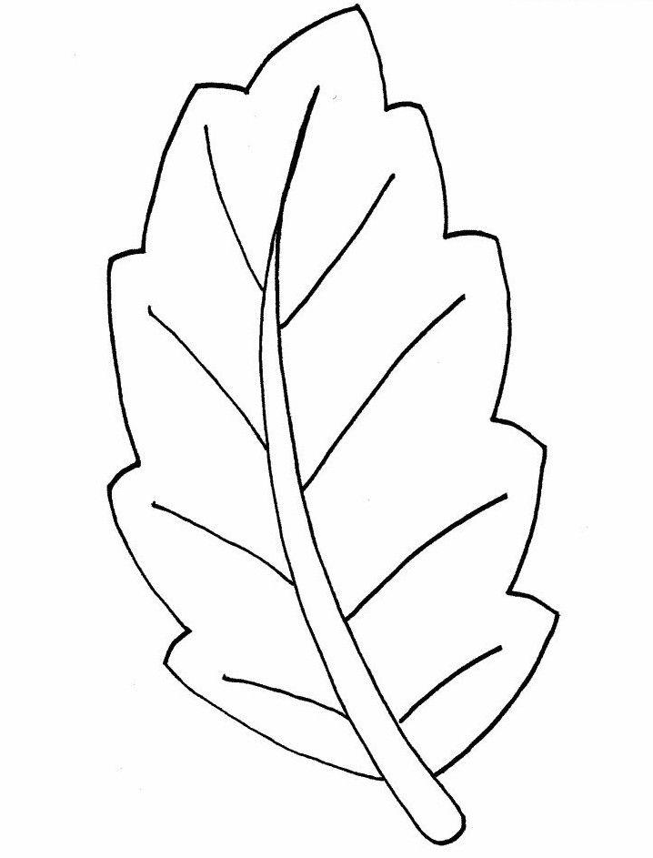 Ausmalbilder Blätter 04 Blatt Vorlage Ausmalen Blätter Und