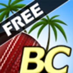 Beach Cricket android game apk