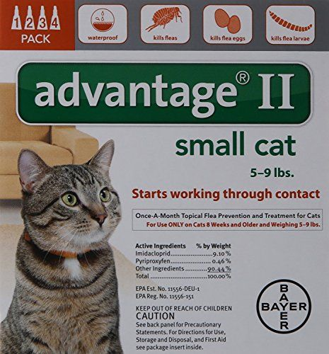 5 To 9pound Small Cat Kills Adult Fleas Eggs Larvae Advantage Ii Check Out The Image By Visiting The Flea Prevention Flea Shampoo For Cats Fleas