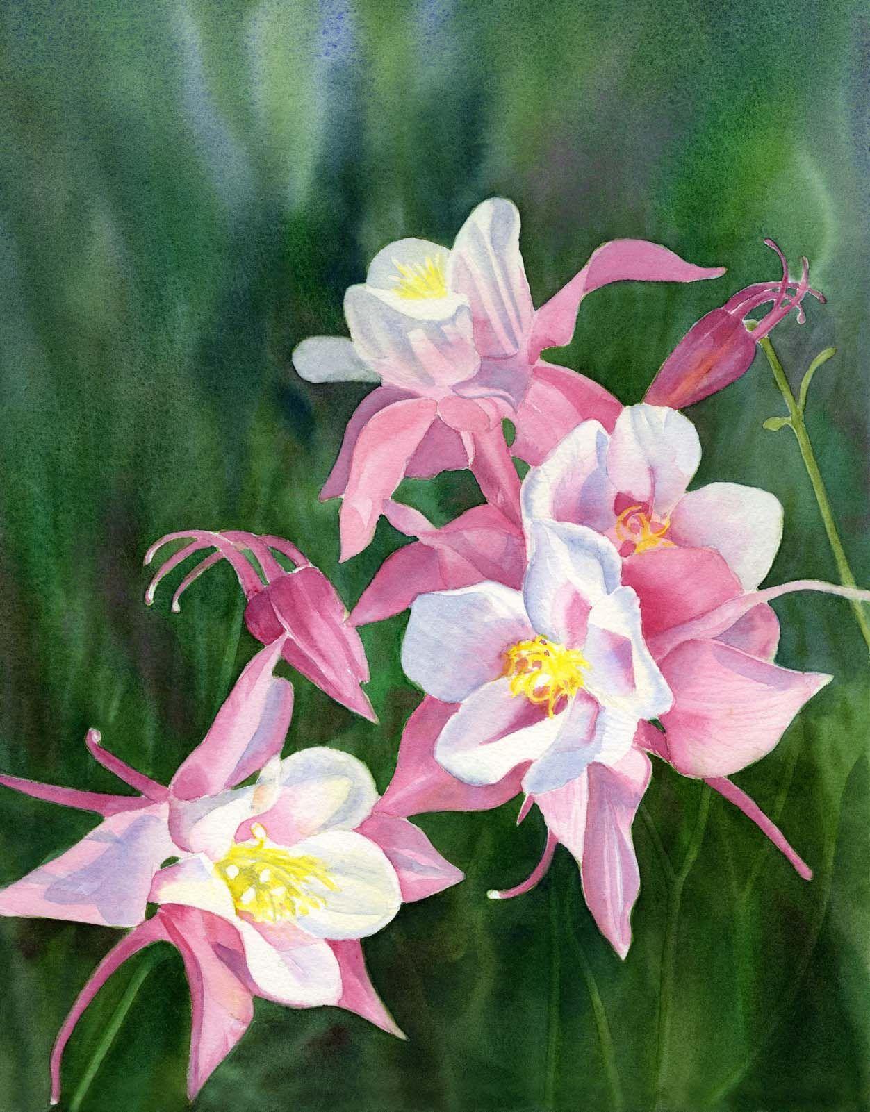 Sharon Freeman S Pacific Northwest Watercolors Flower Painting Flower Art Watercolor Flowers