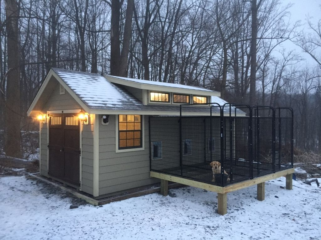 Dog kennel with transom and shed doors could also be