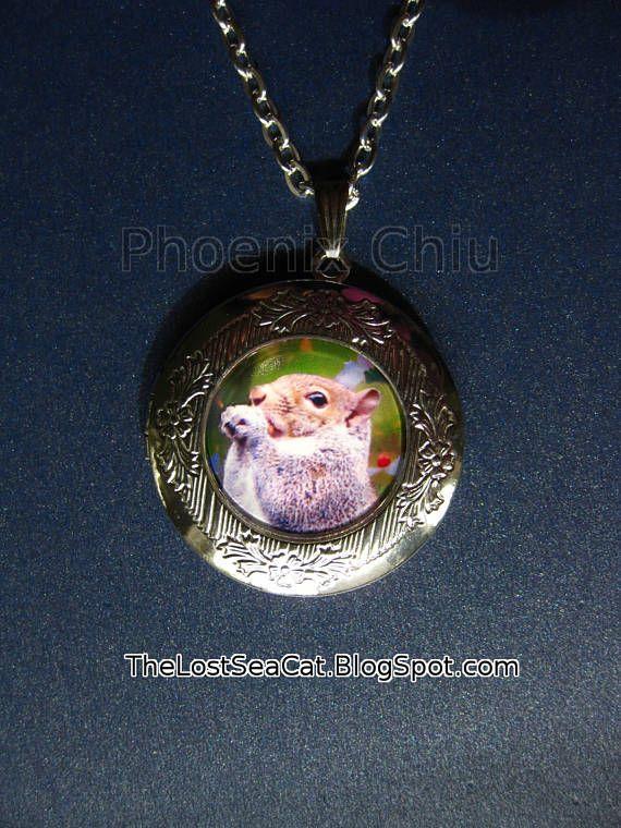 Squirrel necklace silver squirrel locket pendant red squirrel squirrel necklace silver squirrel locket pendant red squirrel aloadofball Gallery