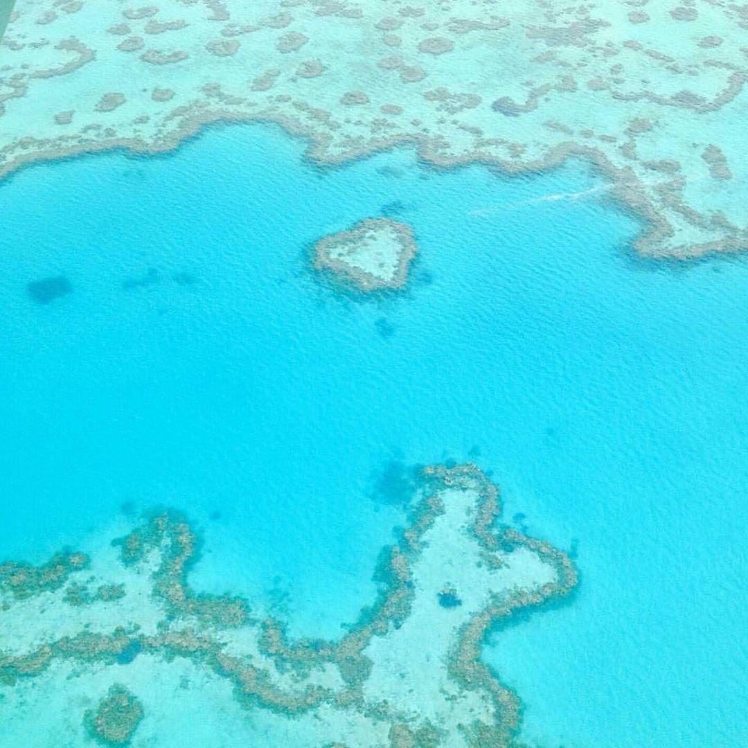 Flying over #heartreef #whitsunday #greatbarrierreef #australia by josephshin119 http://ift.tt/1UokkV2