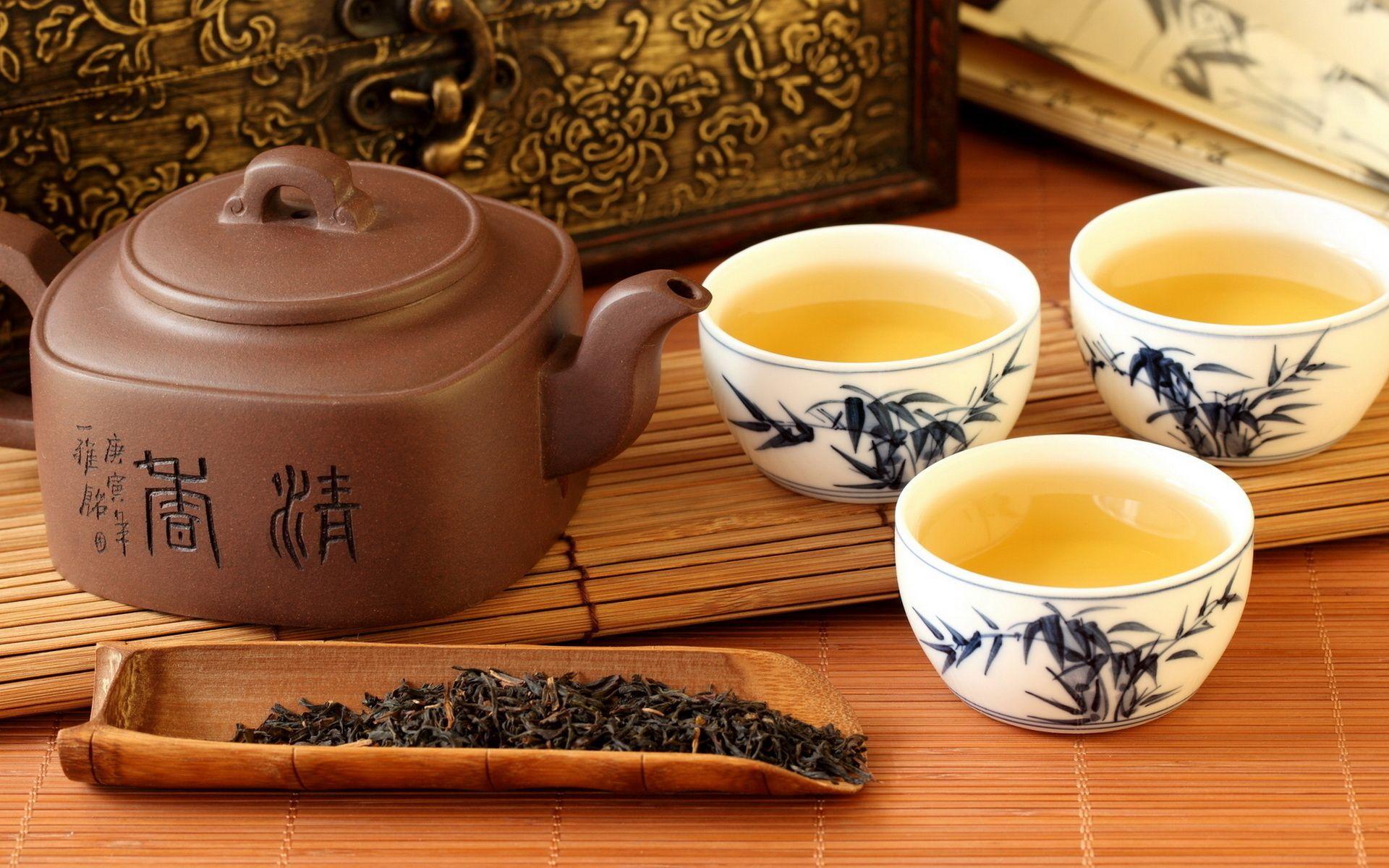 tea garden resort darjeeling, tea garden resort india, best tea retreat in darjeeling