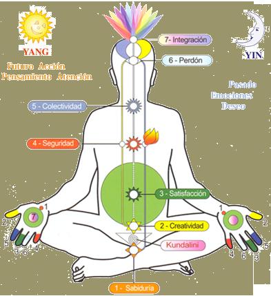 Sahaja Yoga (socios de la UNESCO), ofrece cursos gratuitos de 3 meses. Telf: 0985601253. Dir: San Gregorio y Versalles, Centro Comercial Quitus, local 365, 2°Piso. Horarios: Mar: 10h y 18h / Mie: 18h / Vie: 10h y 18h  .
