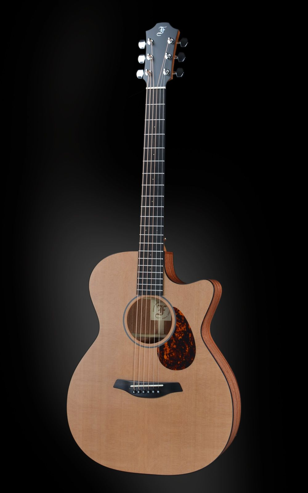 The Czech exhibitor Furch Guitars can be found at hall 3.1 D 90
