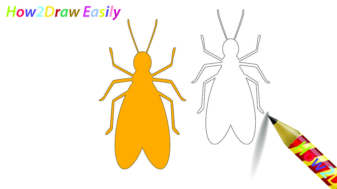 Termite Drawing Coloring Page Termite Insect