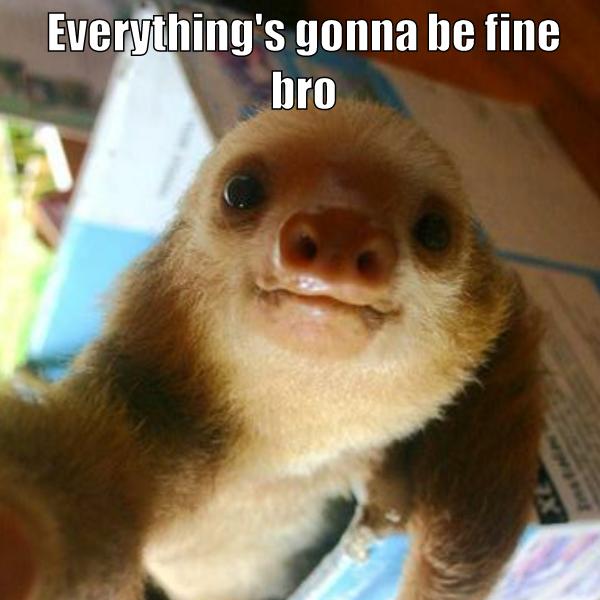 Cheer Up Animal Antics Cute Animals Cuteness Overload