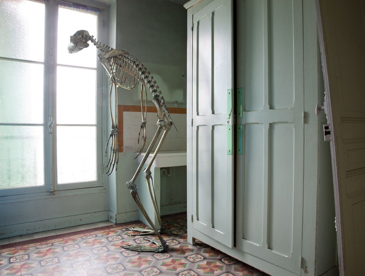 Marc Da Cunha Lopes photography #skeleton #surreal #surrealism #dinosaur #interiors #photography #photos #bones #everyday #archaeology