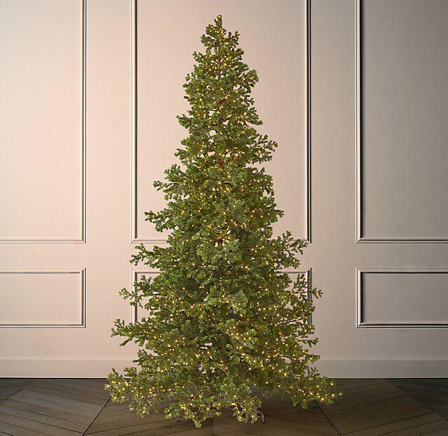 Faux Shasta Fir Starlit Tree With Illuminate Technology 12