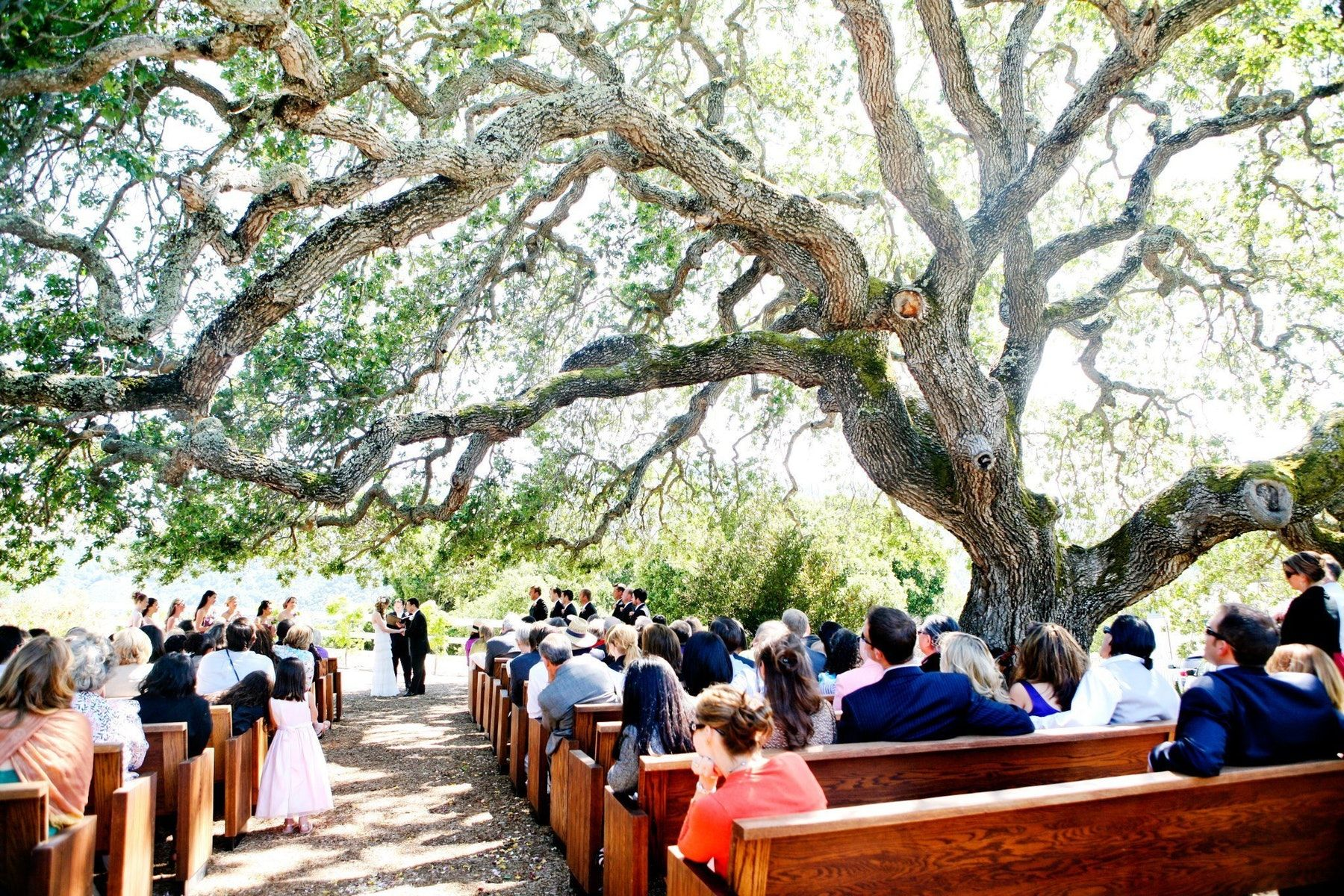 12 fabulous monterey and carmel elopementsmall wedding