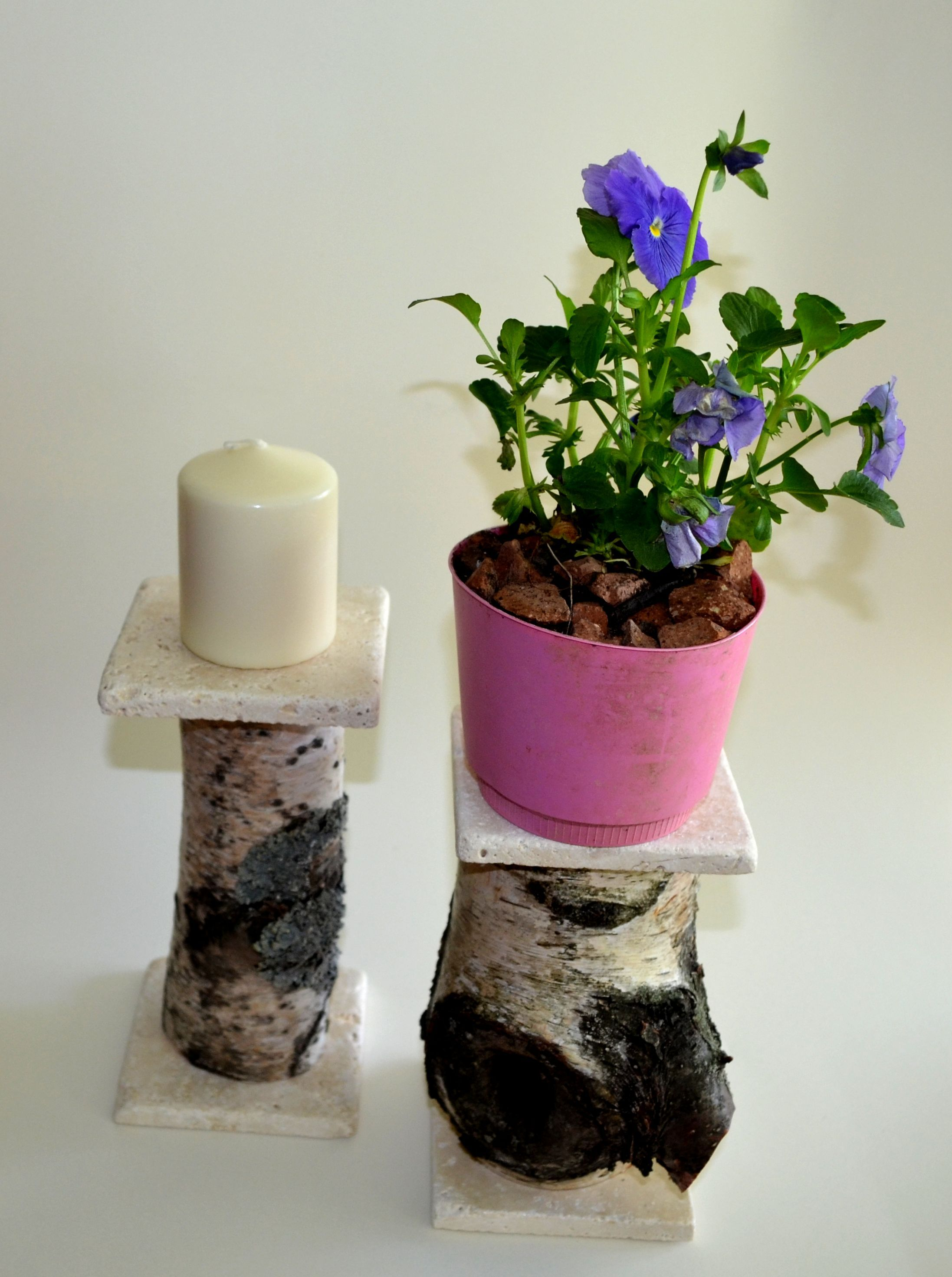 variety of small birch logs with travertine shelf as plant stand or ...