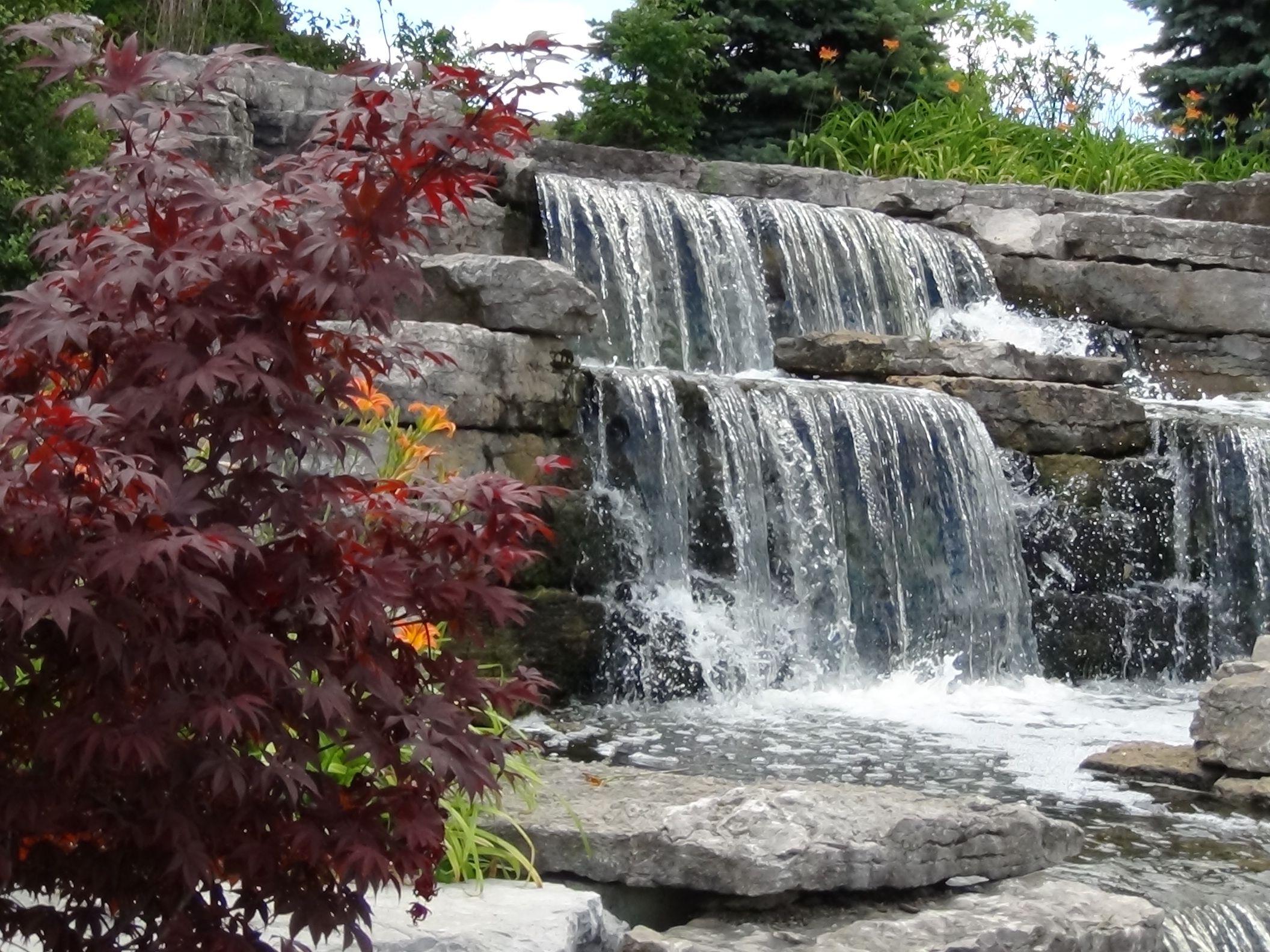 Waterfall garden at Richmond Green gardens in Richmond