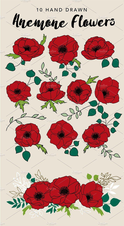 Anemone Flower Drawing : anemone, flower, drawing, Drawn, Anemone, Flowers, Flower, Drawing, Design,, Flower,