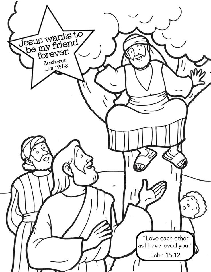 Free Coloring Pages Of Story Zacchaeus Sketch Page