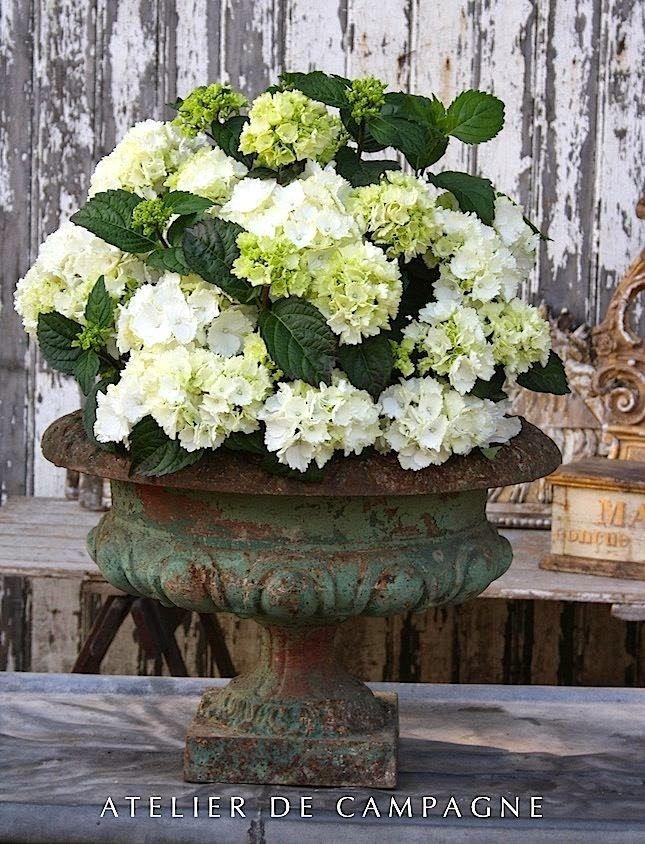 Ceramic Shoe Planter Victorian Succulent Garden Decor Rustic Baroque Ivory Vase Vessel Outdoor Floral Arrangement Party Large Centerpiece