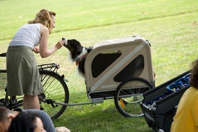 croozer dog dog bike trailer croozer fietskarren dog. Black Bedroom Furniture Sets. Home Design Ideas
