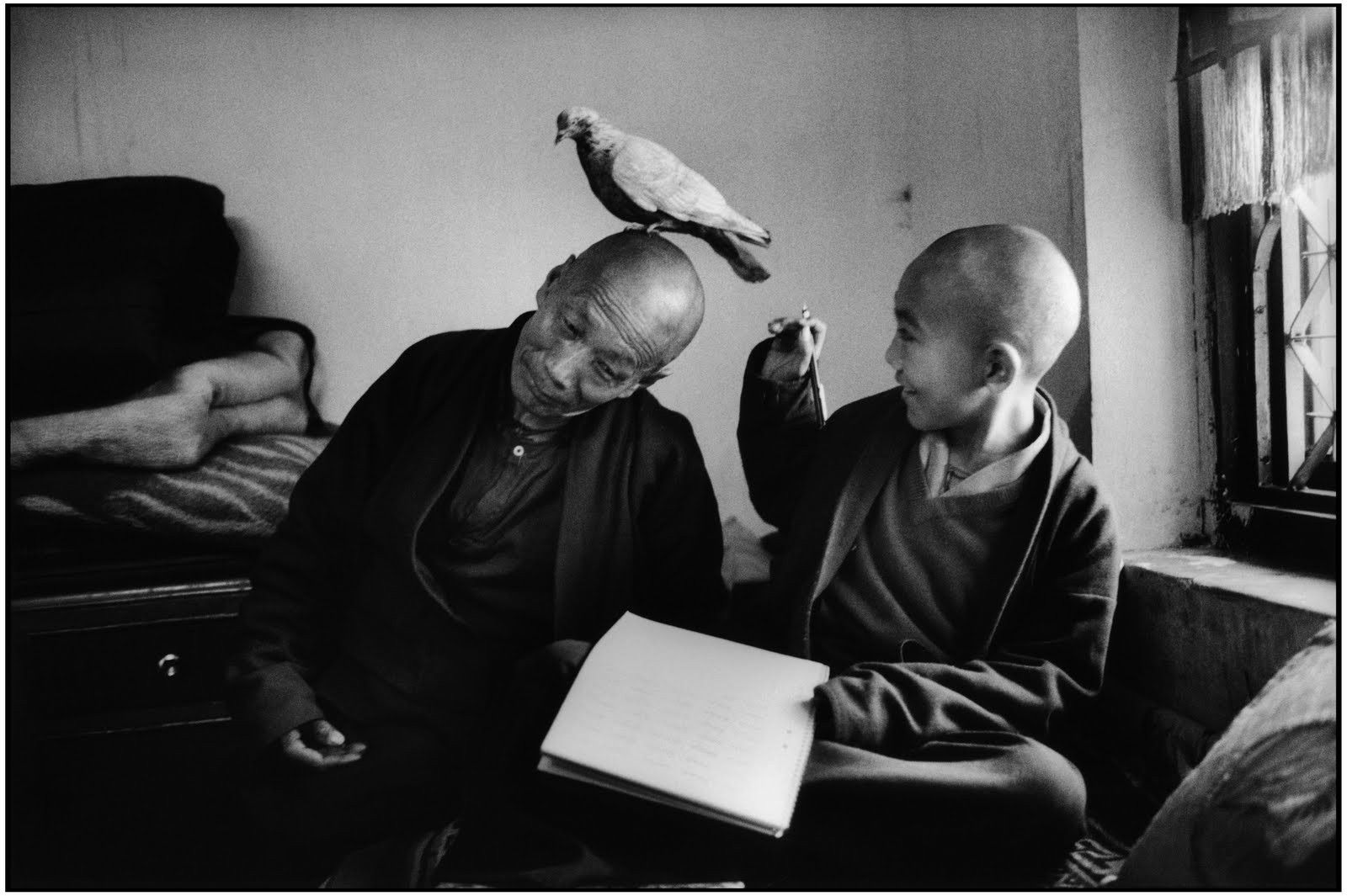 Photos Of Old Buddhist Monks