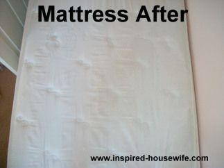 How To Get Pee Stains Out Of A Mattress Diy Cleaning