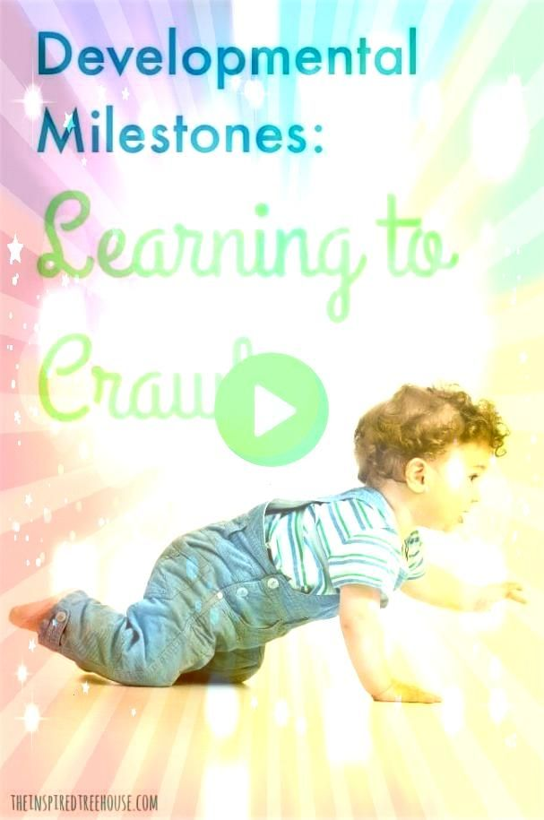 Inspired Treehouse Learning to crawl is an The Inspired Treehouse Learning to crawl is an The Inspired Treehouse Learning to crawl is an Quantum Reflex Integration Quantu...