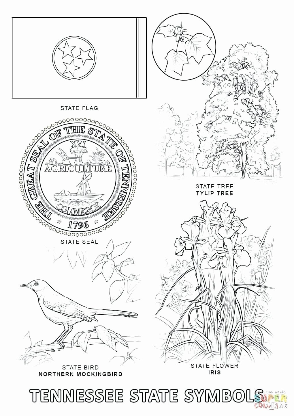 State Bird Coloring Pages Di 2020