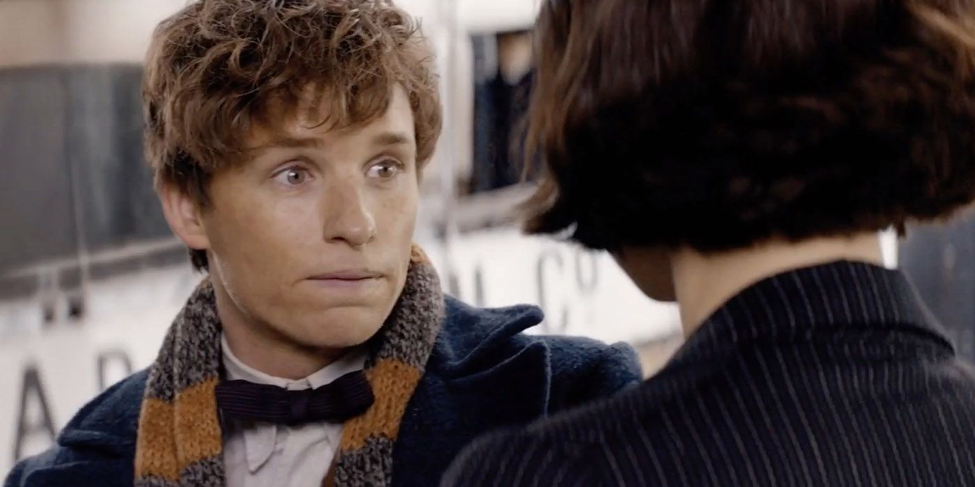 Harry Potter: 15 Things You Didn't Know About Newt Scamander | Harry