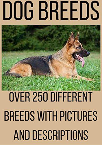 Dog Breed Encyclopedia Dog Breeds Dog Training Dog Names And