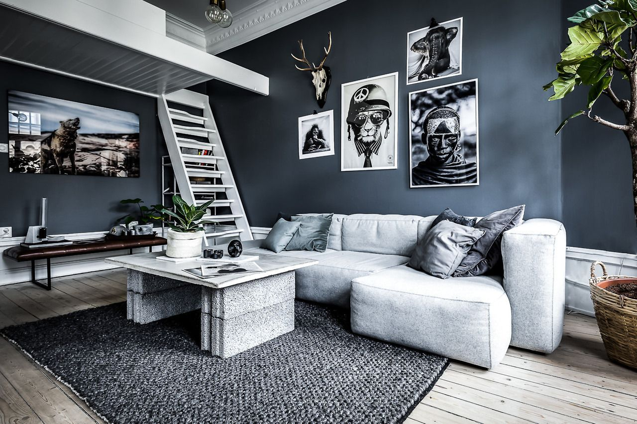 Studio Apartment With Dark Wall Colour And Loft Bed Apartment
