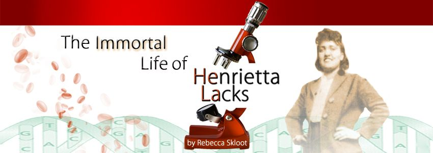 the immortal life of henrietta lacks lesson plan developed by dr  the immortal life of henrietta lacks lesson plan developed by dr lisa kiely