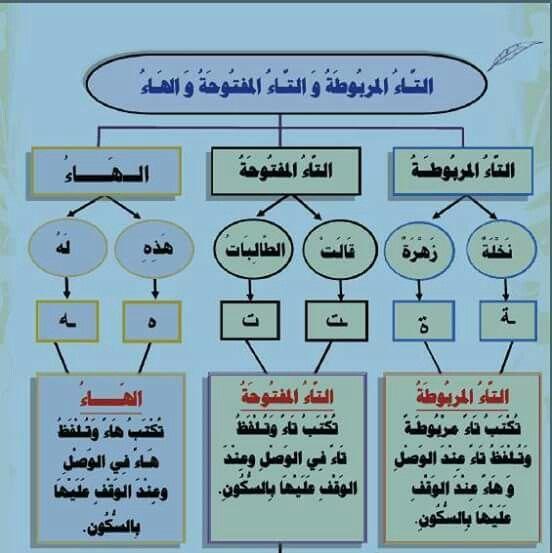 التاء المربوطة والتاء المفتوحة Learning Arabic Learn Arabic Language Arabic Language