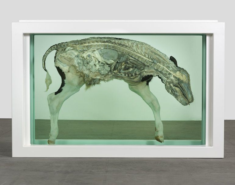 Damien Hirst - The Prodigal Son, 1994 | Damien Hirst ...