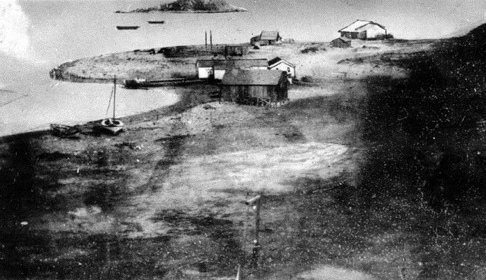 (1850)* - View of what is now the San Pedro Harbor in a 1850 daguerreotype (silver copper plate process photo). The old landmark, Deadman's Island is in the background (it was removed in the 1920s to expand the harbor).