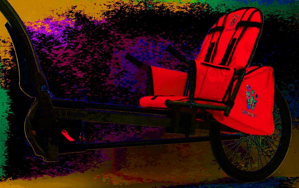 Weehoo Anhanger Fahrrad Sitz Pedelec Fahrrad Fahren