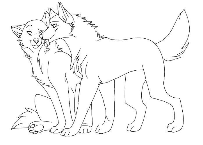 gorgeous and amazing drawing technique for fur and a wolf in general description from couple drawingswolf drawingsanime - Anime Wolf Couples Coloring Pages
