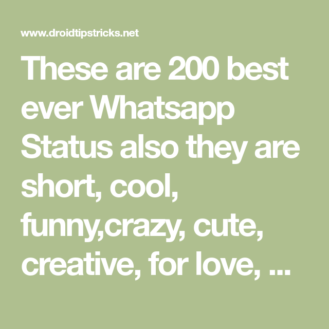 These Are 200 Best Ever Whatsapp Status Also They Are Short