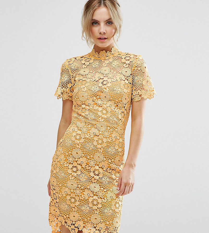 Paper dolls petite allover premium lace pencil dress yellow products