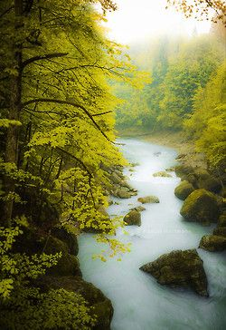River by Pascal Herrmann