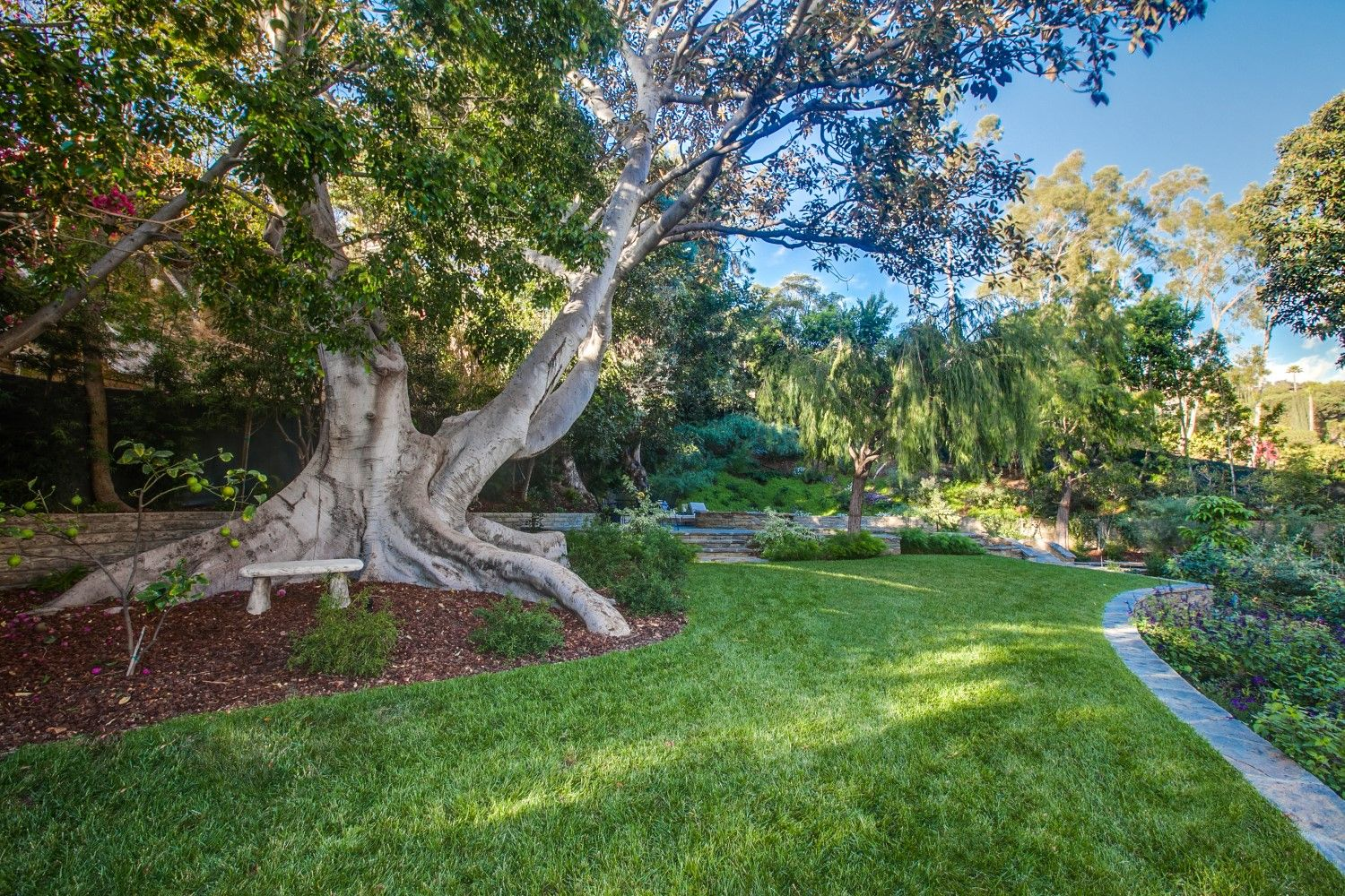 Pin by Paradise Gardens on Our Landscape Designs ...