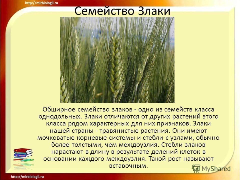 Решебник на контурные карты по истории 5 класс данилов сизов кузнецова николаева