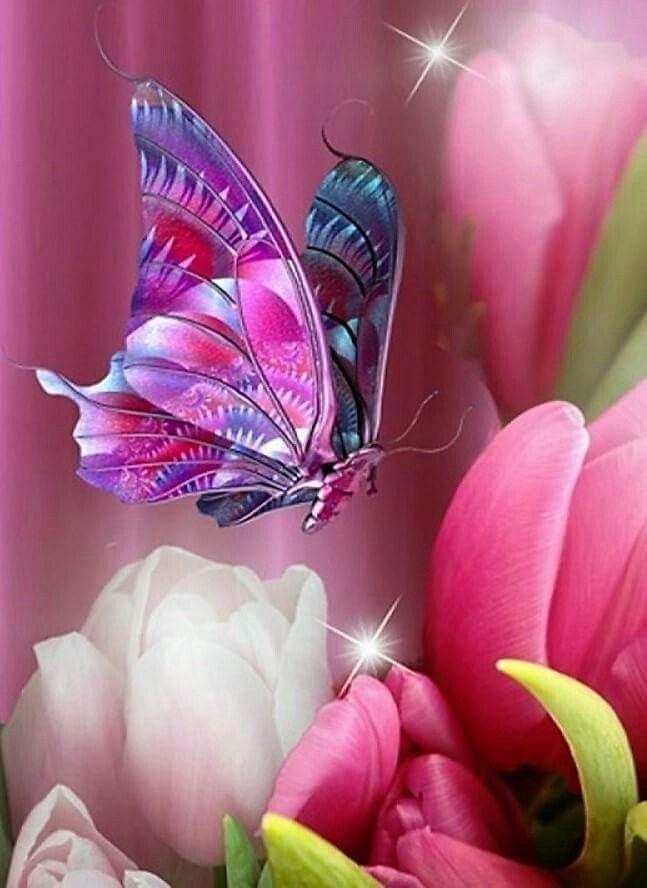 Pin By Laura Reidy On Borboletas E Flores Beautiful Butterflies Butterfly Wallpaper Butterfly,Tapered Rectangular Lamp Shades Uk
