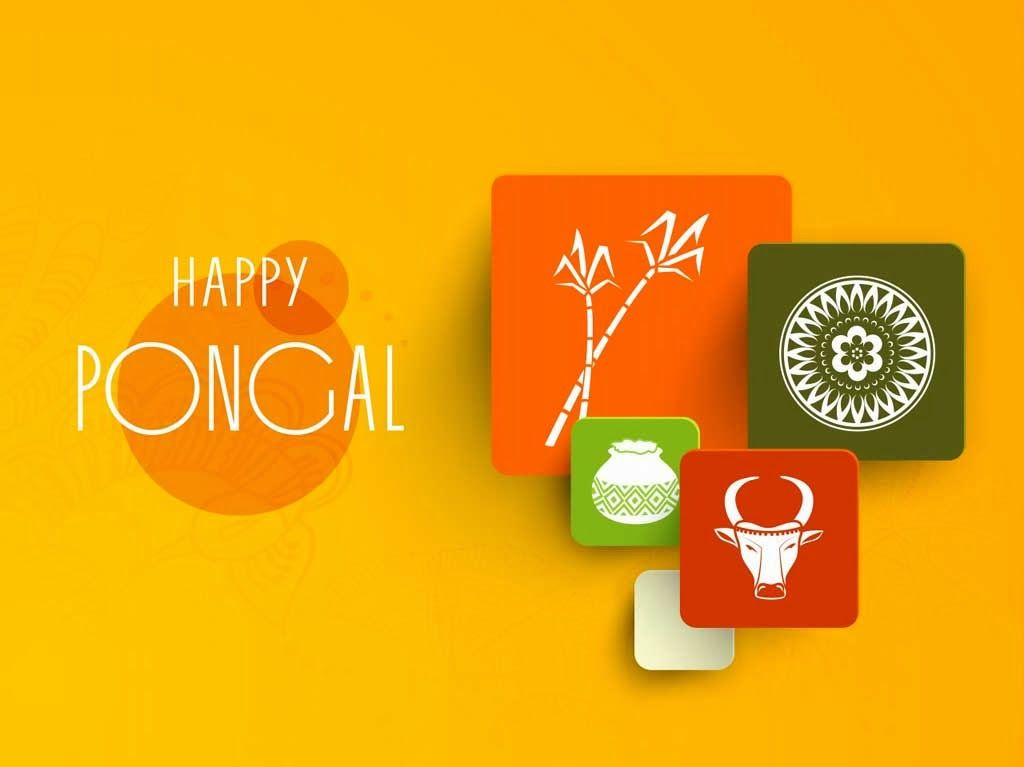 Happy pongal wishes greetings cards with quotes pictures alive happy pongal festival greetings and wishes card picture wallpaper m4hsunfo