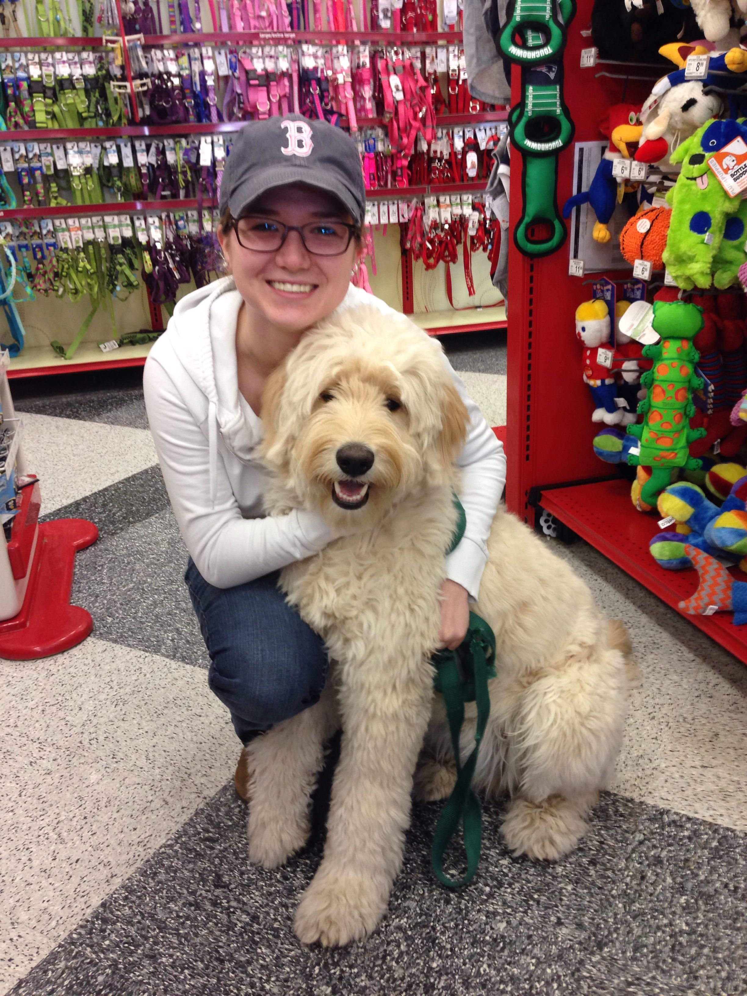 First Time To Petco Goldendoodle Goldendoodle Labradoodle Goldendoodle Haircuts