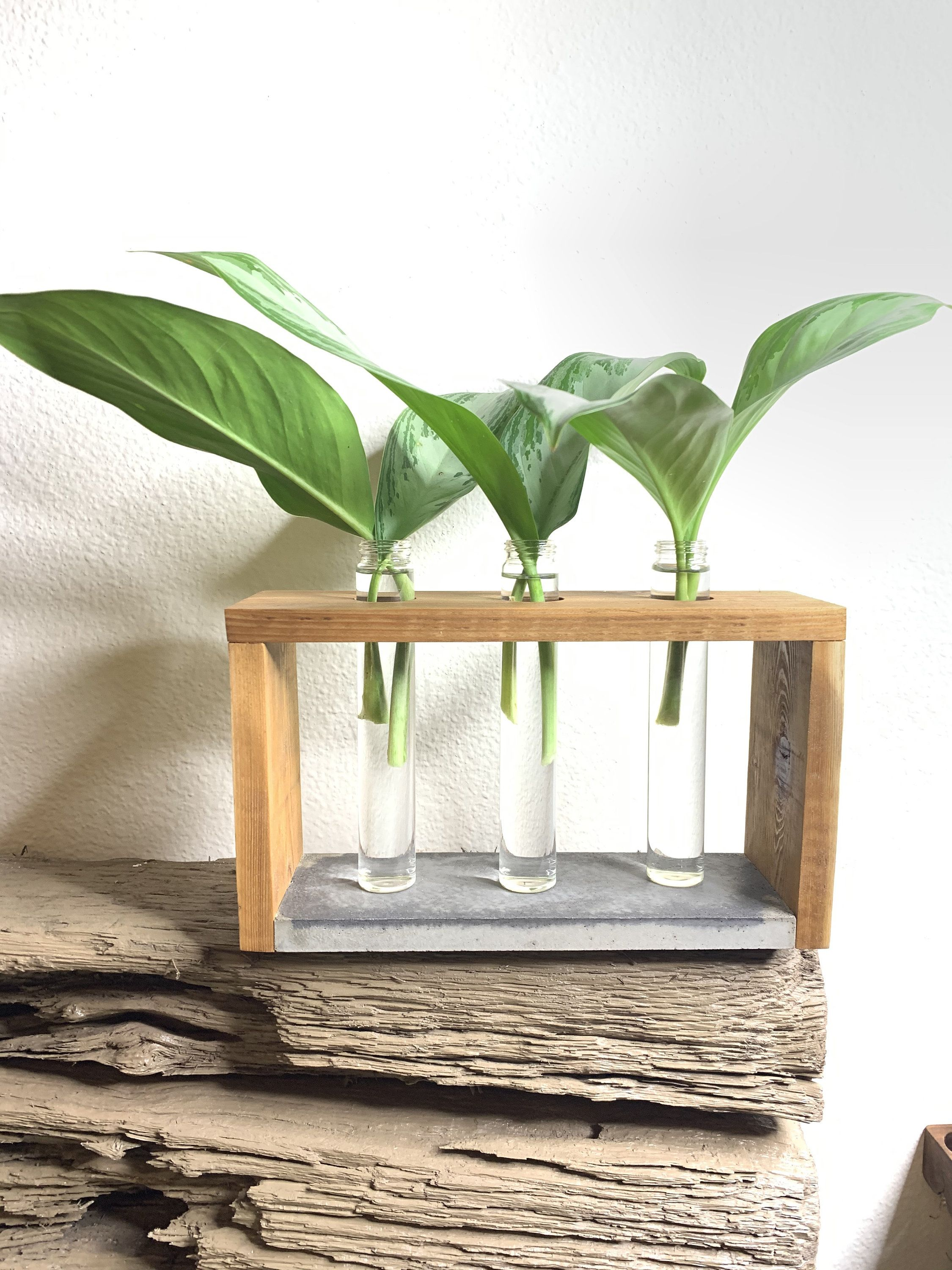 indoor plant stand with pot plant propagation station for succulents pots holdet Mini planter for plant propagation with teracotta pots
