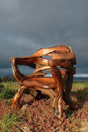 Cedar root chair by maritza