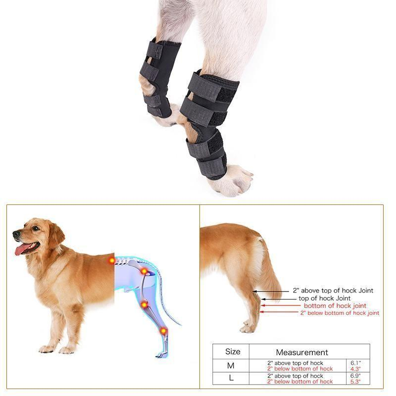 Therapeutic Canine Joint Wounds Heal Protect Wrap With 4