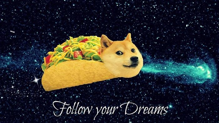 Taco Doge Follow Your Dreams Inspirational Words Of