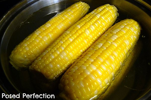 Posed Perfection: The Best Sweet Corn on the Cob